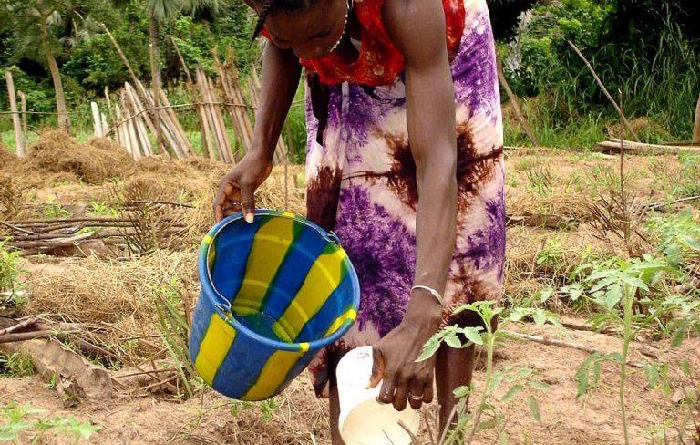 Femme qui arrose ses plants